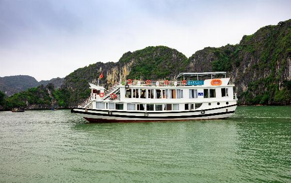 3-STAR APRICOT CRUISE
